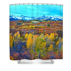 Dallas Divide Palette  Shower Curtain
