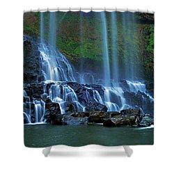 Dambri Waterfall Shower Curtain