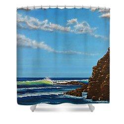 Dana Point Walk Shower Curtain