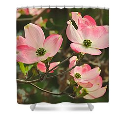 Dance Of The Dogwood Shower Curtain