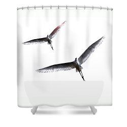 Dance Of The Egrets Shower Curtain