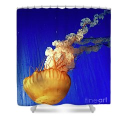 Dance Of The Jelly Shower Curtain