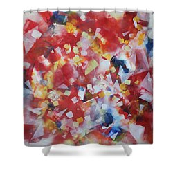 Dance Of The Lights Shower Curtain
