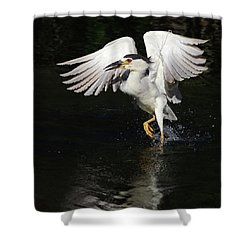 Dance On Water. Shower Curtain