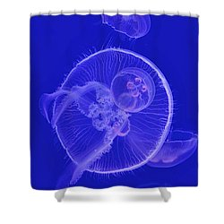 Shower Curtain featuring the digital art Dance With Jellyfish by Leo Symon