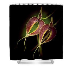 Dancer 2 Shower Curtain
