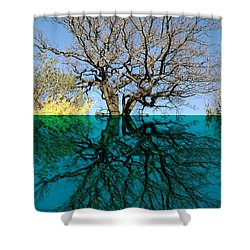 Dancers Tree Reflection  Shower Curtain