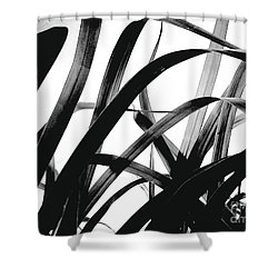 Dancing Bamboo Black And White Shower Curtain