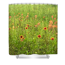Dancing Beauties Shower Curtain