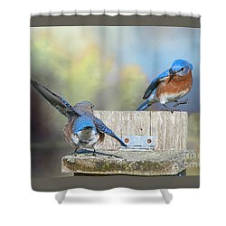Dancing Bluebirds Shower Curtain by Bonnie Barry
