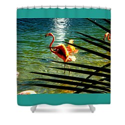 Shower Curtain featuring the painting Dancing Flamingo by Yolanda Rodriguez
