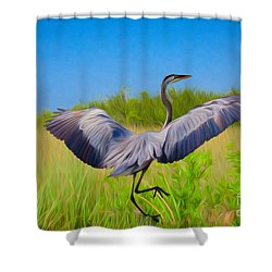 Dancing In The Glades Shower Curtain
