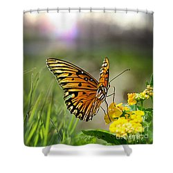 Dancing In The Light Shower Curtain