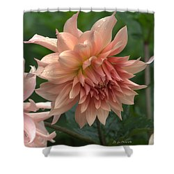 Dancing In The Rain Shower Curtain by Jeanette C Landstrom