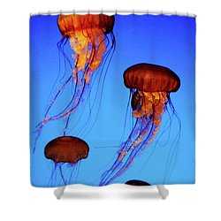 Shower Curtain featuring the photograph Dancing Jellyfish by Anthony Jones