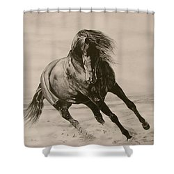 Dancing Pace Shower Curtain by Melita Safran