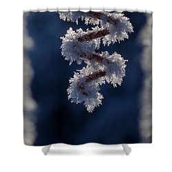 Shower Curtain featuring the photograph Dancing Spiral by Silke Brubaker