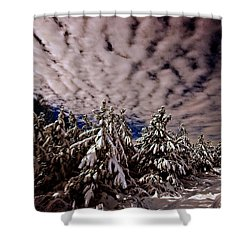 Dancing Trees  Shower Curtain by John Harding