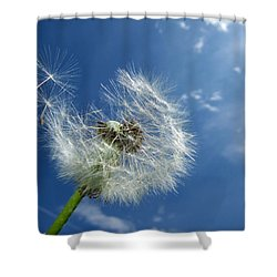 Dandelion And Blue Sky Shower Curtain