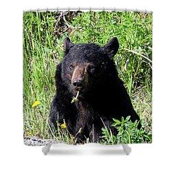 Dandelion Bear Shower Curtain