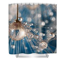 Dandelion Blue Sparkling Drops Shower Curtain