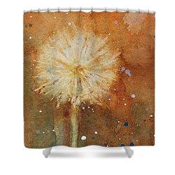 Dandelion Clock 1 Shower Curtain