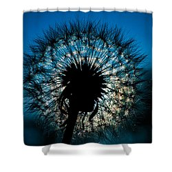 Dandelion Dream Shower Curtain