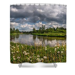 Shower Curtain featuring the photograph Dandelion Field On The River Bank by Dmytro Korol