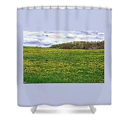 Dandelion Field With Barn Shower Curtain