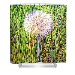 Dandelion In Glory Shower Curtain by Joel Bruce Wallach