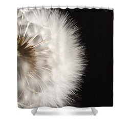 Dandelion In Macro 4 Shower Curtain by Micah May