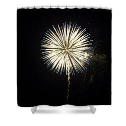 Dandelion Life Shower Curtain by Tara Lynn