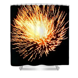 Shower Curtain featuring the photograph Dandelion Of Fire by Jesse Ciazza