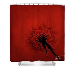 Dandelion Silhouette On Red Textured Background Shower Curtain