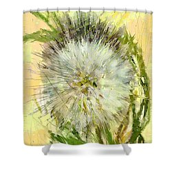 Dandelion Sunshower Shower Curtain