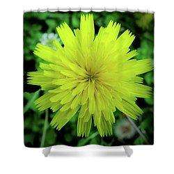 Dandelion Symmetry Shower Curtain