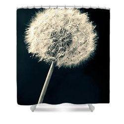 Dandelion Shower Curtain by Ulrich Schade