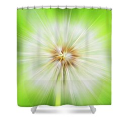 Dandelion Warp Shower Curtain