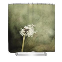 Dandelion  #lensbaby #composerpro Shower Curtain by Mandy Tabatt