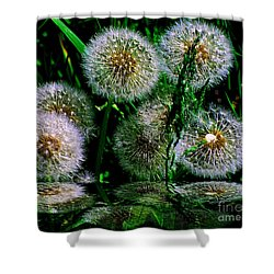 Shower Curtain featuring the photograph Dandies  by Elfriede Fulda