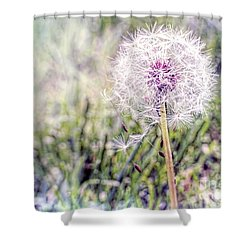 Dandilion Wishes Shower Curtain