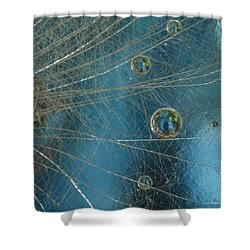 Dandy Drops Shower Curtain