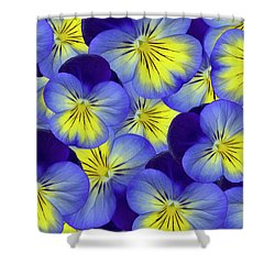 Dandy Pansies Shower Curtain