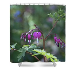 Dangling Hearts Shower Curtain by Morris  McClung