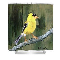 Dapper Fellow Shower Curtain