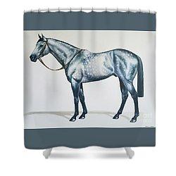 Dapple Gray Shower Curtain