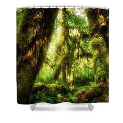 Dappled Dreams Shower Curtain