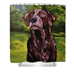 Shower Curtain featuring the painting Darby by Denny Morreale
