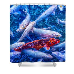 Dare To Stand Out Shower Curtain by Swank Photography