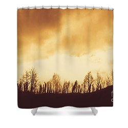 Shower Curtain featuring the photograph Dark Afternoon Woodland by Jorgo Photography - Wall Art Gallery